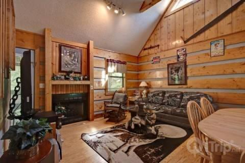 Dances with Wolves - Image 1 - Pigeon Forge - rentals