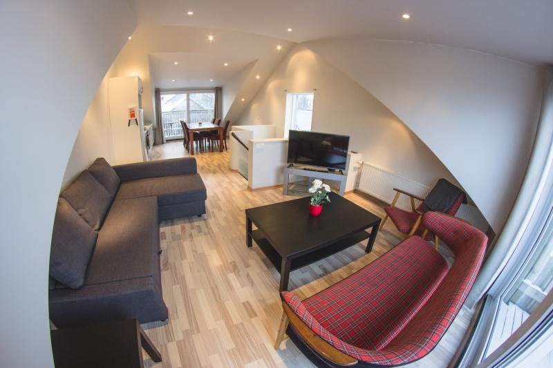 Downtown-Two bedroom penthouse apartment - Image 1 - Reykjavik - rentals
