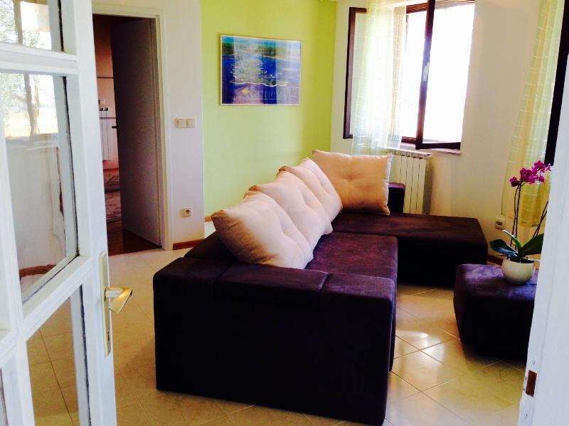 Apartments Dunja - 70451-A1 - Image 1 - Vinkuran - rentals