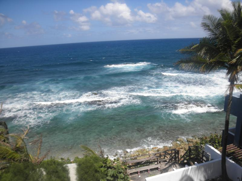 view from the roof terrace - dorado puerto rico oceanfront vacation rentals - Dorado - rentals