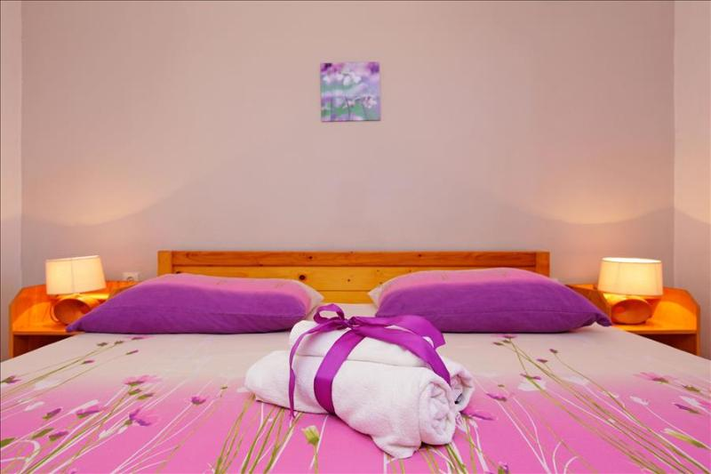 Viola Apartment on Island Korčula offers an Authentic Dalmatian Experience - Image 1 - Zrnovo - rentals