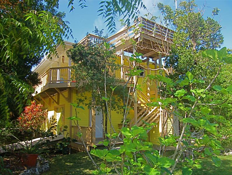 Gone Bananas nestled in the treetops - Gone Bananas on Lubbers..secluded but not isolated - Tilloo Cay - rentals
