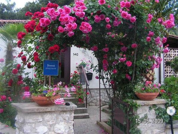 Apartment in Mali Lošinj - 75206 - Image 1 - Mali Losinj - rentals