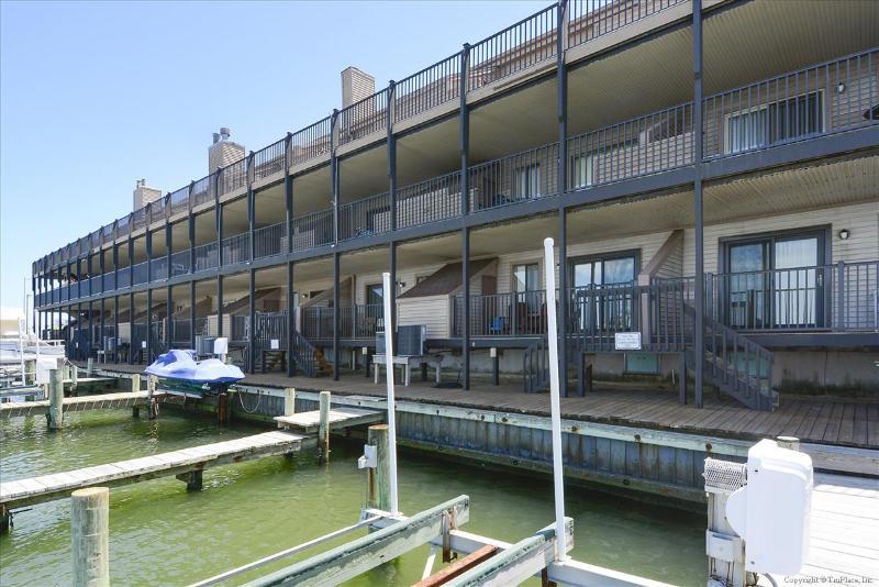 Bahama Princess Q - Image 1 - Ocean City - rentals