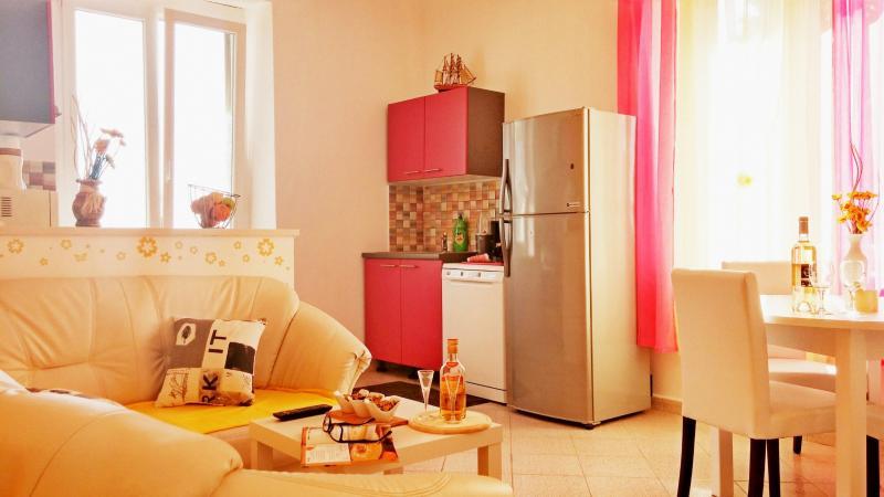 Apartment Rajka - 75441-A1 - Image 1 - Viskovici - rentals