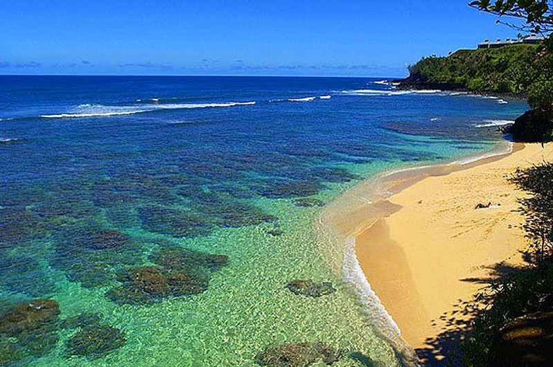 There are 7 world class beaches within a 20 minute drive - Aloha Sunrise Cottage - Kilauea - rentals