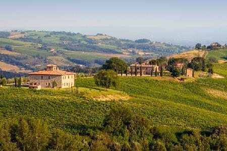 Fabulous Villa Barbi offers complimentary master class in wine, pool & daily cleaning - Image 1 - Orvieto - rentals