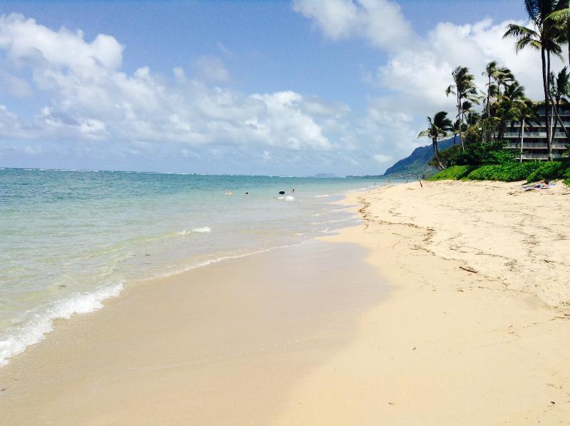 Breathtaking Ocean Views Surround You! - Image 1 - Hauula - rentals