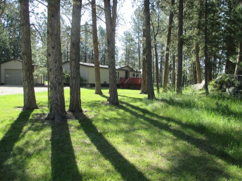 Dakota Pines Hideaway - Image 1 - Custer - rentals