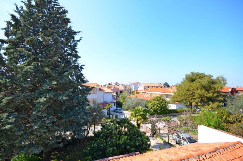 Apartments Jovanka - 70411-A1 - Image 1 - Rovinj - rentals