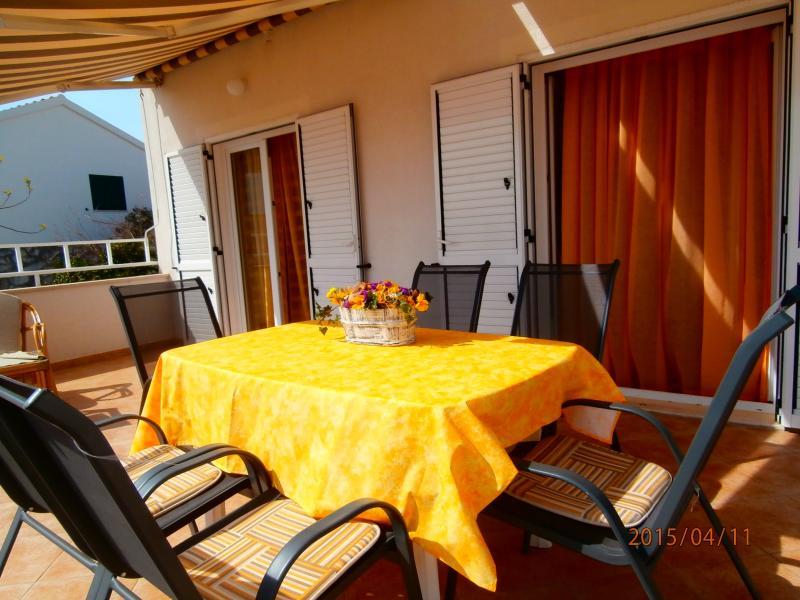 Apartments Ira - 41321-A1 - Image 1 - Okrug Gornji - rentals