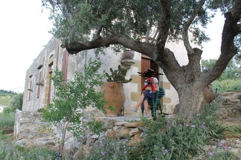 exterior - tsikalaria  tradional  holiday home - Kissamos - rentals