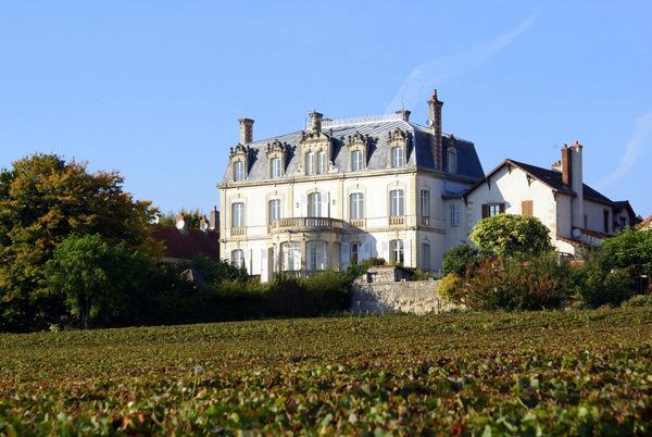 Chateau De Mercury - Image 1 - Mercurey - rentals