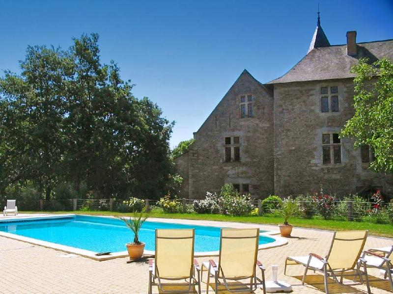 Chateau De La Chance - Image 1 - Faye-d'Anjou - rentals