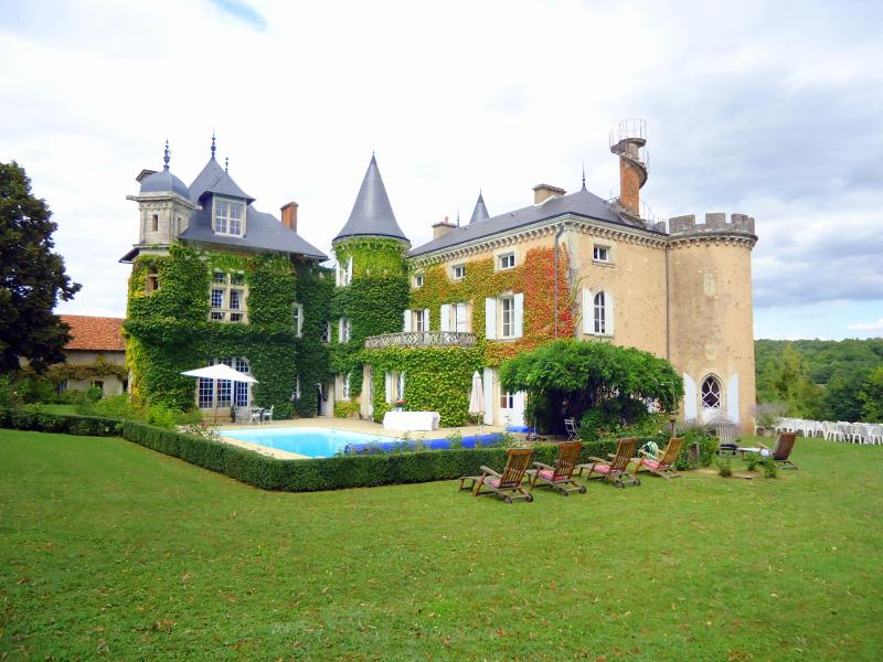Chateau St Victor Estate - Image 1 - Ingrandes - rentals