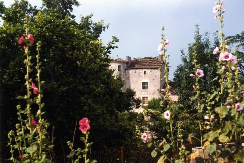 Chateau D'ax - Chateau Only - Image 1 - Bagat En Quercy - rentals
