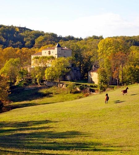 Chateau Le Quille - Image 1 - La Celle-sous-Gouzon - rentals