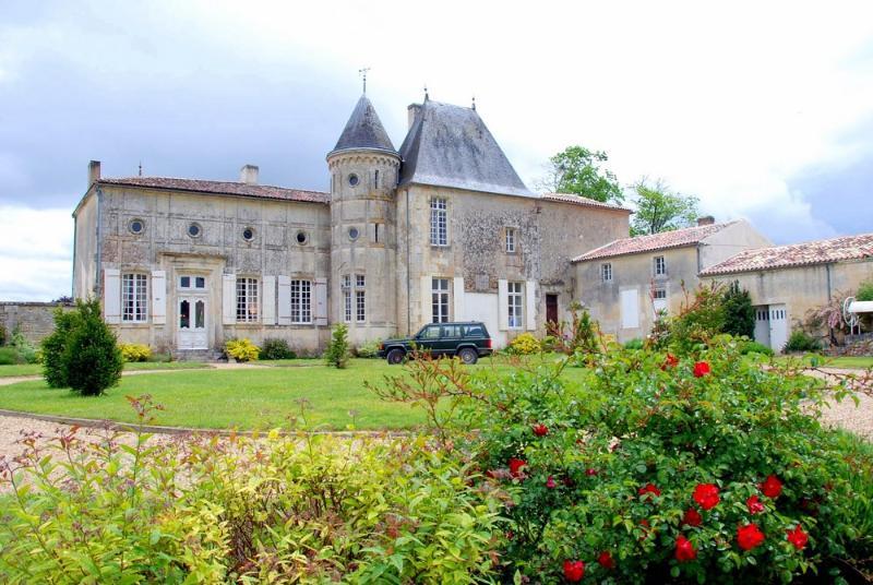 Chateau St Surin - Image 1 - Bougneau - rentals