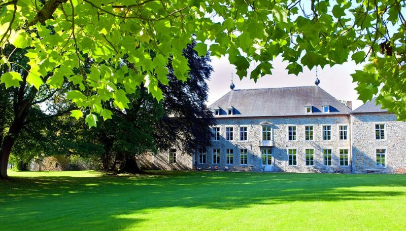 Chateau Alois - Image 1 - Ciney - rentals