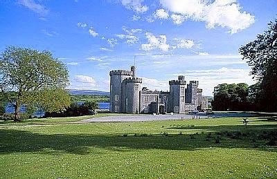 Gothic Castle Estate - Image 1 - Gort - rentals