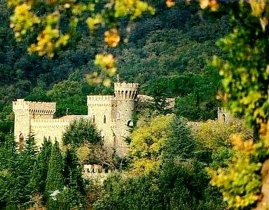 Castello Medievale - Image 1 - Passignano Sul Trasimeno - rentals