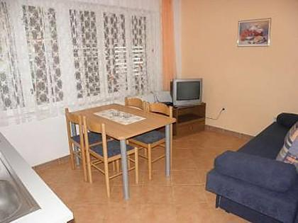 A1(2+2): living room - 4660 A1(2+2) - Sveti Filip i Jakov - Sveti Filip i Jakov - rentals
