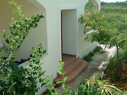courtyard (house and surroundings) - 4984 A2(2+2) - Zaton (Zadar) - Zaton (Zadar) - rentals