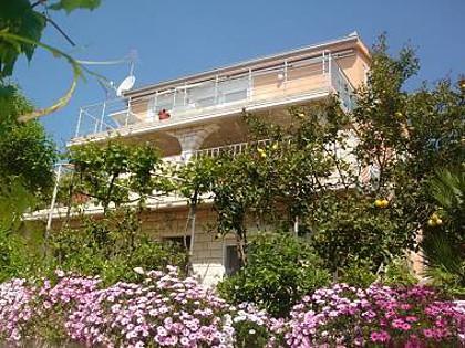 house - 5141  A2(4+2) - Okrug Gornji - Okrug Gornji - rentals