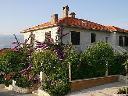 house - 02101POST  A3(6+2) - Postira - Postira - rentals