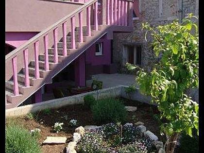 courtyard (house and surroundings) - 5477 Ljubičasti(2) - Sali - Sali - rentals