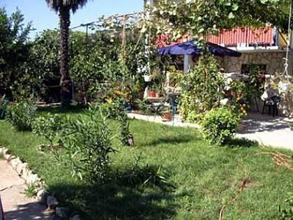 courtyard (house and surroundings) - 5608 Crveni (2+1) - Murter - Murter - rentals