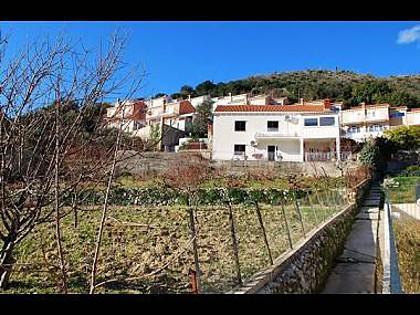 house - 5717 A1(4) - Zaton (Dubrovnik) - Zaton (Dubrovnik) - rentals