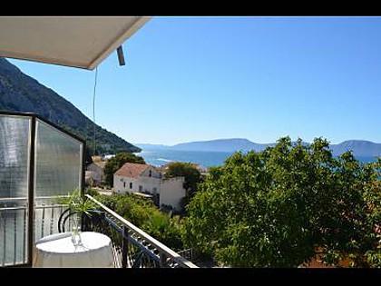 A1(2+1): terrace view - 00313GRAD  A1(2+1) - Gradac - Gradac - rentals
