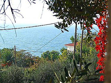 A1(4+1): terrace view - 01313GRAD A1(4+1) - Gradac - Gradac - rentals