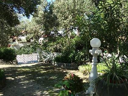 courtyard (house and surroundings) - 6844 A1(4+1) - Makarska - Makarska - rentals