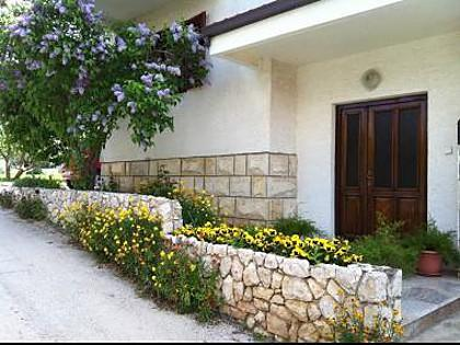 courtyard (house and surroundings) - 8075  A3(4) - Bibinje - Bibinje - rentals