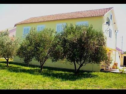 house - 8144 A1(4+2) - Zaton (Zadar) - Zaton (Zadar) - rentals