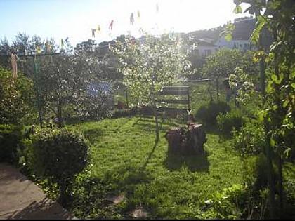 garden (house and surroundings) - 8281  A1(7) - Tkon - Tkon - rentals