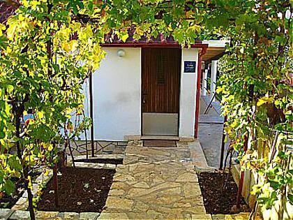 courtyard (house and surroundings) - 00118PETR SA1(2) - Petrcane - Petrcane - rentals