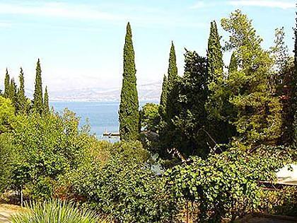 vegetation (house and surroundings) - 02301SUPE  A3(4+1) - Supetar - Supetar - rentals
