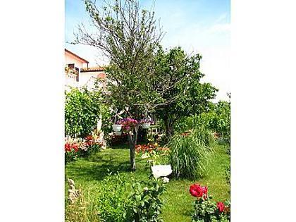 garden (house and surroundings) - 00918NIN A4(2+1) - Nin - Nin - rentals