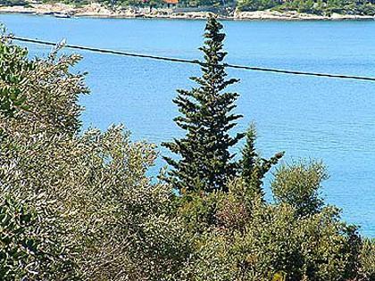 sea view (house and surroundings) - 00402NECU Desni(4) - Necujam - Necujam - rentals