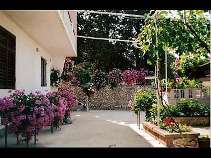 common terrace (house and surroundings) - 2036 A3(4+1) - Tisno - Tisno - rentals
