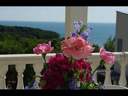 A6(3): sea view - 00404RUKA A6(3) - Cove Rukavac - Rukavac - rentals