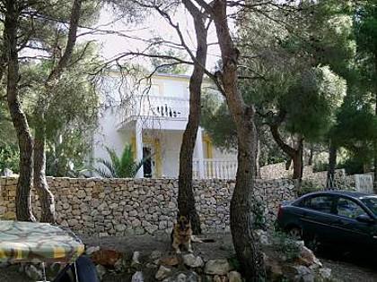 house - A00304RUKA A1(4+2) - Cove Rukavac - Rukavac - rentals