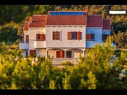 house - 35377 A2(2+2) - Molat (Island Molat) - Molat Island - rentals