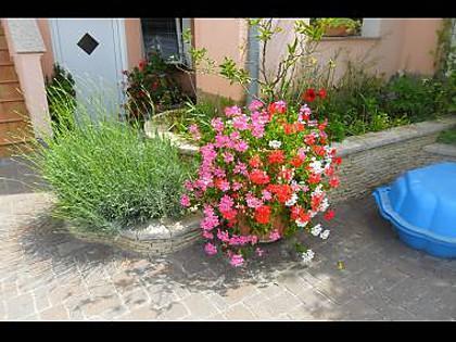 courtyard (house and surroundings) - 35564 A1(4+2) - Zadar - Zadar - rentals
