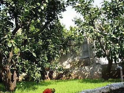 A1(2+2) Donji: garden terrace - 2120 A1(2+2) Donji - Lumbarda - Lumbarda - rentals