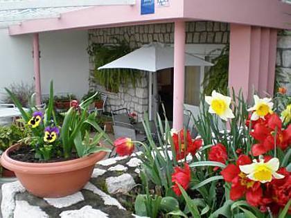 SA1 zuti(2+1): terrace - 2124  SA1 zuti(2+1) - Crikvenica - Crikvenica - rentals