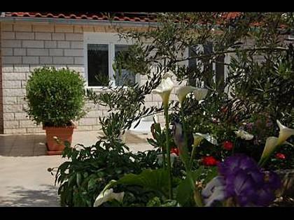 Studio(3): flowers - 00703HVAR Studio(3) - Hvar - Hvar - rentals